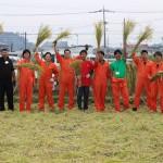 2015年 稲刈り体験イベントを開催しました!